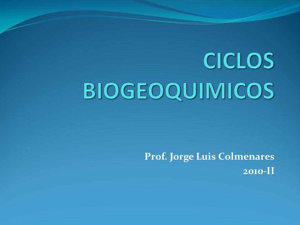 Prof. Jorge Luis Colmenares 2010-II