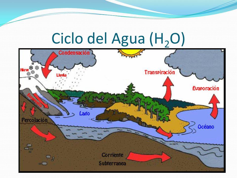 Ciclo del Agua (H 2 O)
