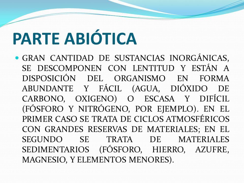 PARTE ABIÓTICA GRAN CANTIDAD DE SUSTANCIAS INORGÁNICAS, SE DESCOMPONEN CON LENTITUD Y ESTÁN A DISPOSICIÓN DEL ORGANISMO EN FORMA ABUNDANTE Y FÁCIL (AGUA, DIÓXIDO DE CARBONO, OXIGENO) O ESCASA Y DIFÍCIL (FÓSFORO Y NITRÓGENO, POR EJEMPLO).