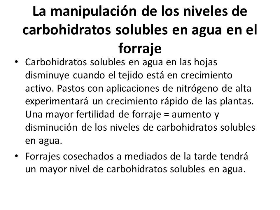 La manipulación de los niveles de carbohidratos solubles en agua en el forraje Carbohidratos solubles en agua en las hojas disminuye cuando el tejido está en crecimiento activo.