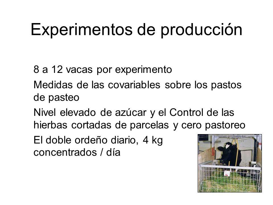 Experimentos de producción 8 a 12 vacas por experimento Medidas de las covariables sobre los pastos de pasteo Nivel elevado de azúcar y el Control de las hierbas cortadas de parcelas y cero pastoreo El doble ordeño diario, 4 kg concentrados / día