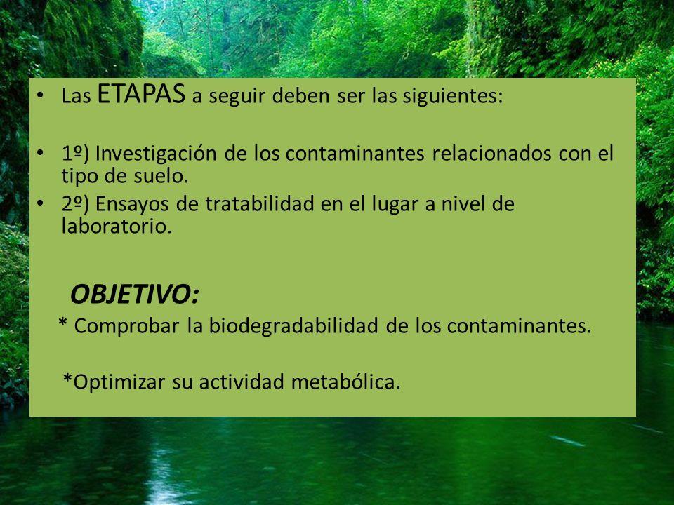 TIPOS DE BIORREMEDIACIÓN DEGRADACION ENZIMATICA BIORREMEDIACION MICROBIANA FITORREMEDIACION