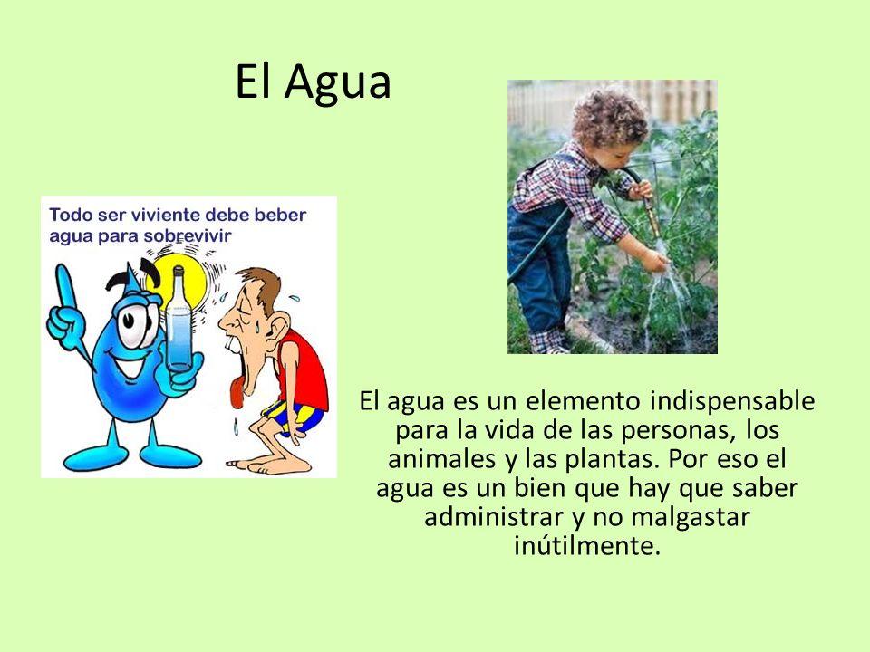 El Agua El agua es un elemento indispensable para la vida de las personas, los animales y las plantas. Por eso el agua es un bien que hay que saber ad