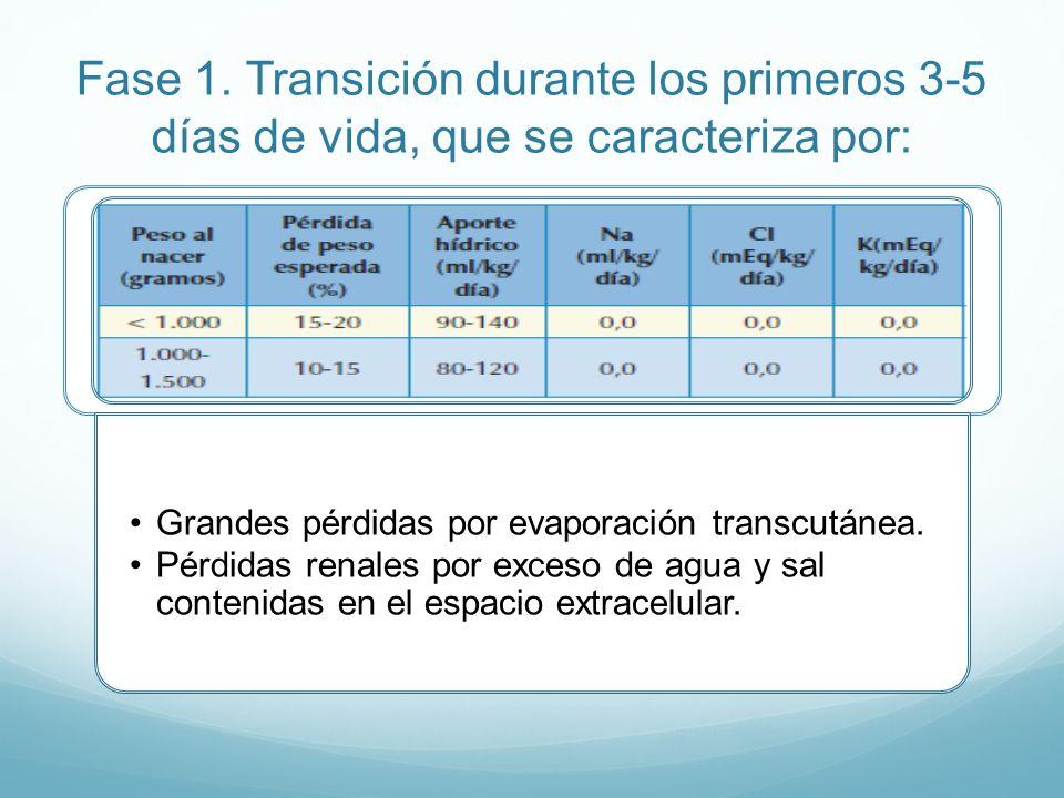 Fase 1. Transición durante los primeros 3-5 días de vida, que se caracteriza por: Grandes pérdidas por evaporación transcutánea. Pérdidas renales por