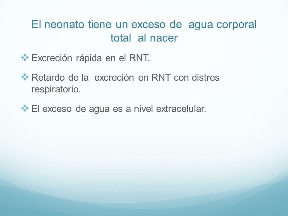 El neonato tiene un exceso de agua corporal total al nacer Excreción rápida en el RNT.