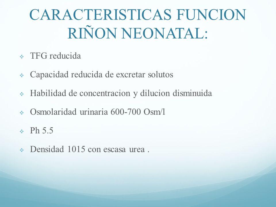 CARACTERISTICAS FUNCION RIÑON NEONATAL: TFG reducida Capacidad reducida de excretar solutos Habilidad de concentracion y dilucion disminuida Osmolaridad urinaria 600-700 Osm/l Ph 5.5 Densidad 1015 con escasa urea.