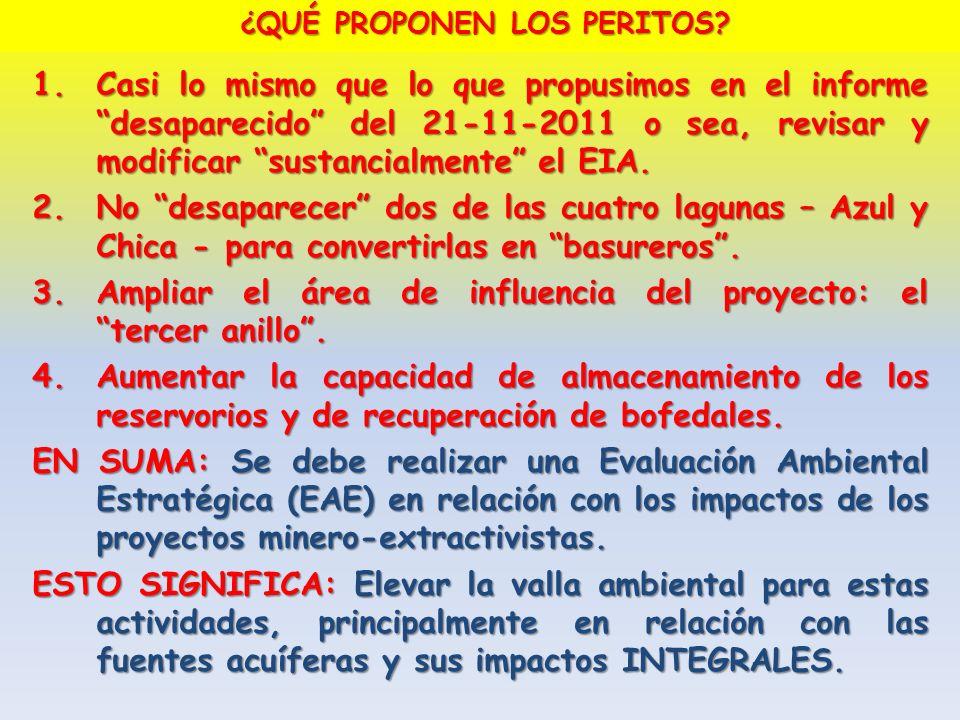 1.Casi lo mismo que lo que propusimos en el informe desaparecido del 21-11-2011 o sea, revisar y modificar sustancialmente el EIA. 2.No desaparecer do