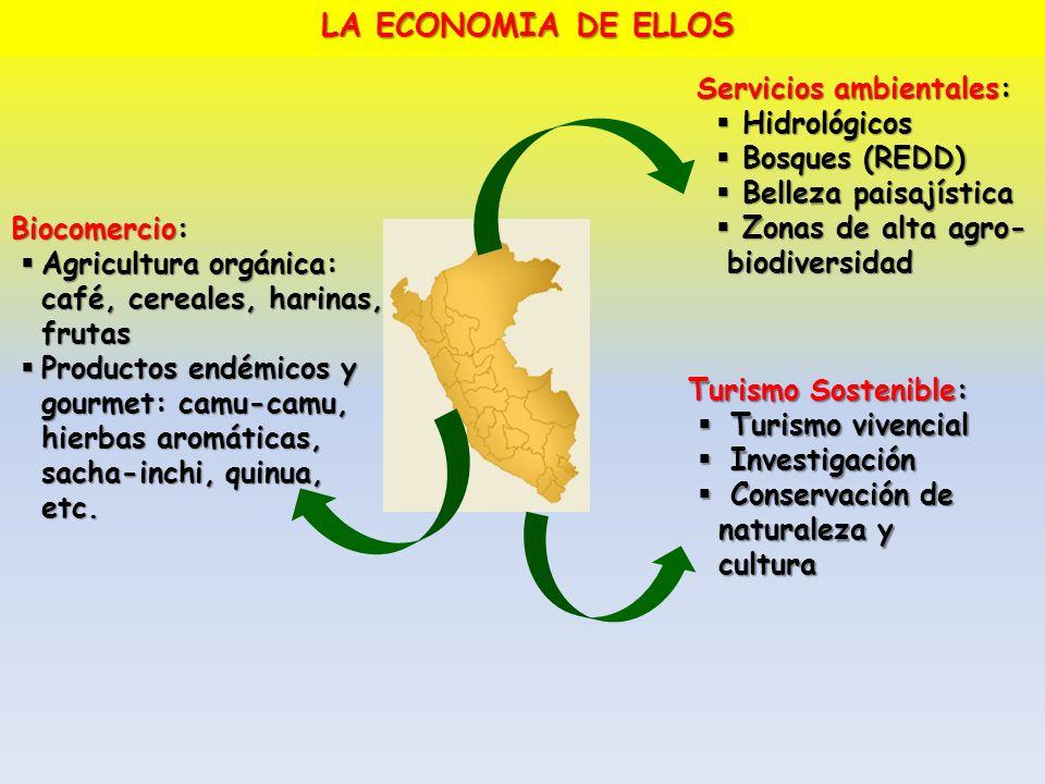 Servicios ambientales: Hidrológicos Hidrológicos Bosques (REDD) Bosques (REDD) Belleza paisajística Belleza paisajística Zonas de alta agro- biodivers