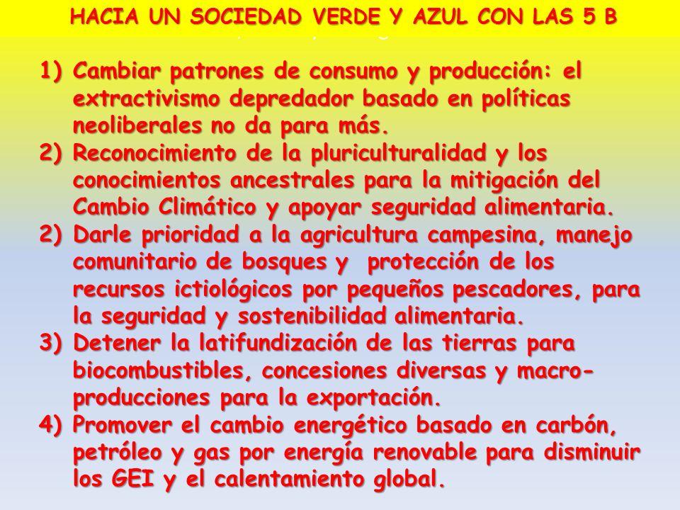 1)Cambiar patrones de consumo y producción: el extractivismo depredador basado en políticas neoliberales no da para más. 2)Reconocimiento de la pluric