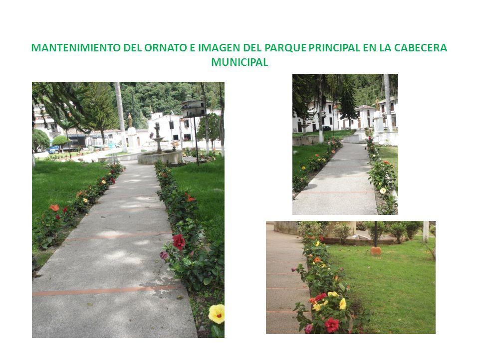 MANTENIMIENTO DEL ORNATO E IMAGEN DEL PARQUE PRINCIPAL EN LA CABECERA MUNICIPAL