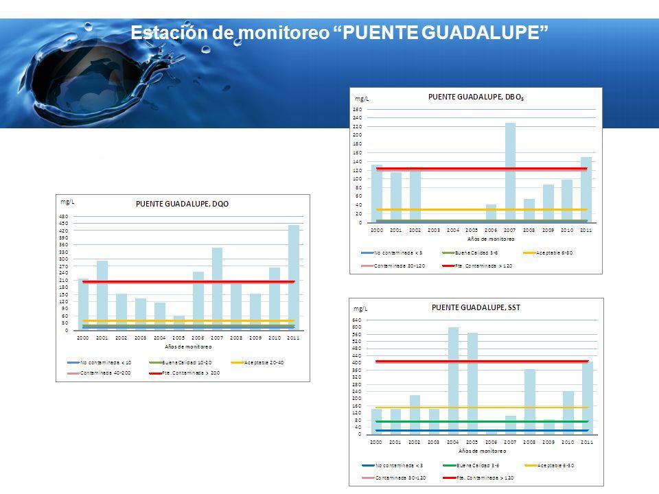 Estación de monitoreo PUENTE GUADALUPE