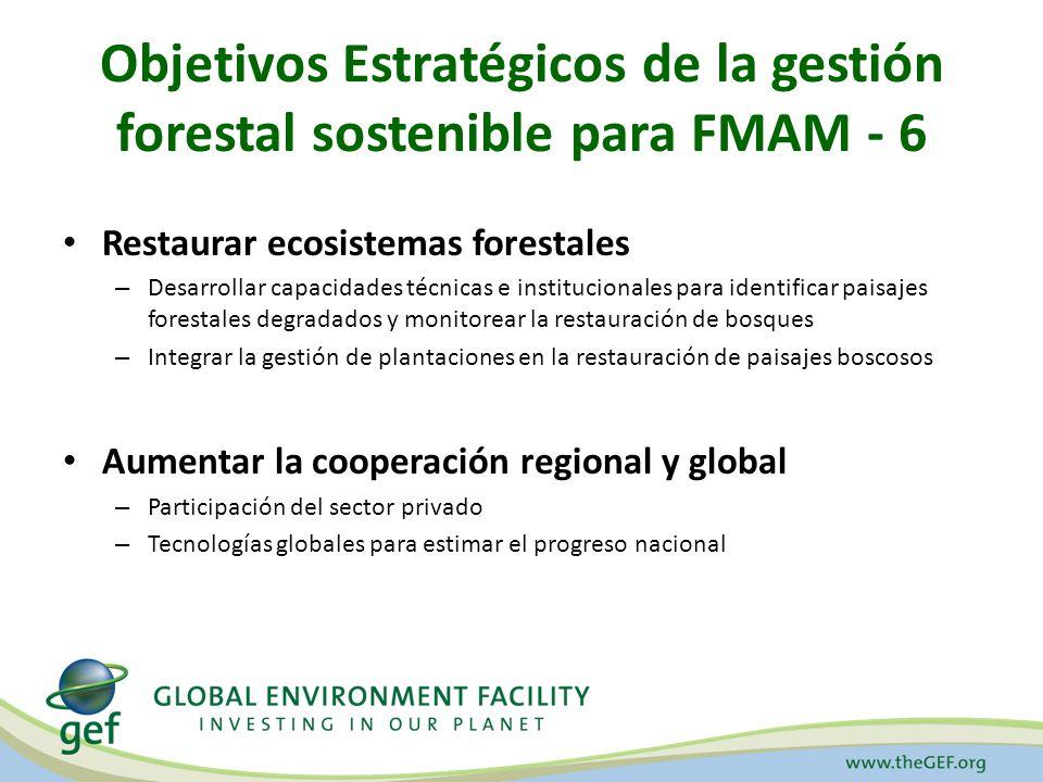 Objetivos Estratégicos de la gestión forestal sostenible para FMAM - 6 Restaurar ecosistemas forestales – Desarrollar capacidades técnicas e institucionales para identificar paisajes forestales degradados y monitorear la restauración de bosques – Integrar la gestión de plantaciones en la restauración de paisajes boscosos Aumentar la cooperación regional y global – Participación del sector privado – Tecnologías globales para estimar el progreso nacional