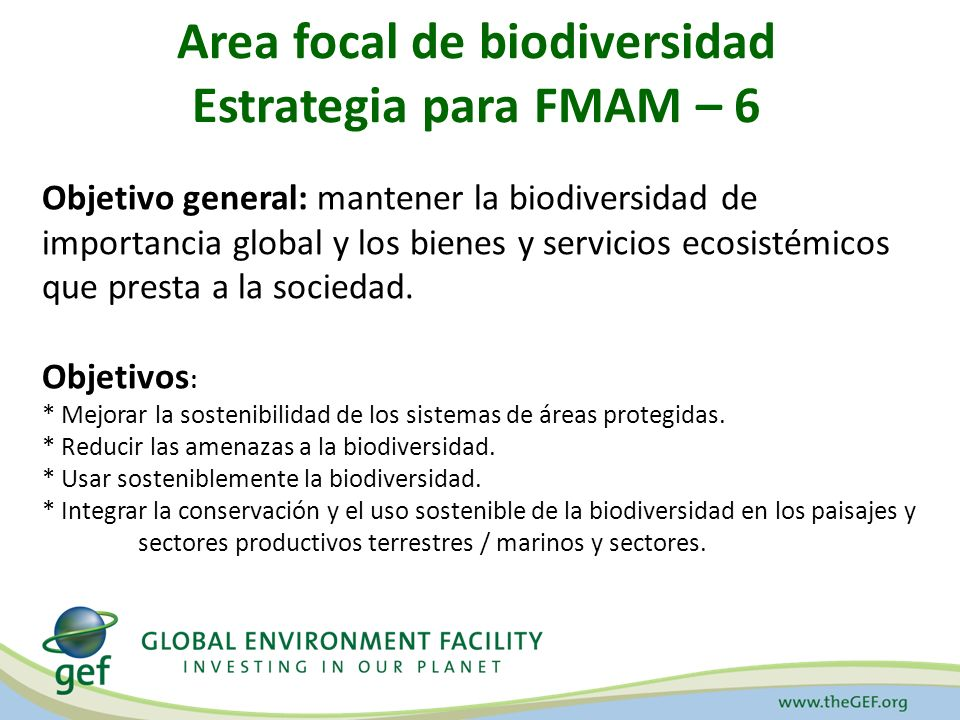 Area focal de biodiversidad Estrategia para FMAM – 6 Objetivo general: mantener la biodiversidad de importancia global y los bienes y servicios ecosistémicos que presta a la sociedad.