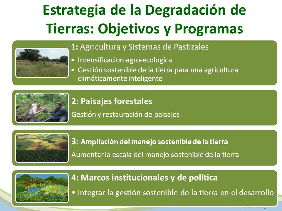 Estrategia de la Degradación de Tierras: Objetivos y Programas 1: Agricultura y Sistemas de Pastizales Intensificacion agro-ecologica Gestión sostenible de la tierra para una agricultura climáticamente inteligente 2: Paisajes forestales Gestión y restauración de paisajes 3: Ampliación del manejo sostenible de la tierra Aumentar la escala del manejo sostenible de la tierra 4: Marcos institucionales y de política Integrar la gestión sostenible de la tierra en el desarrollo