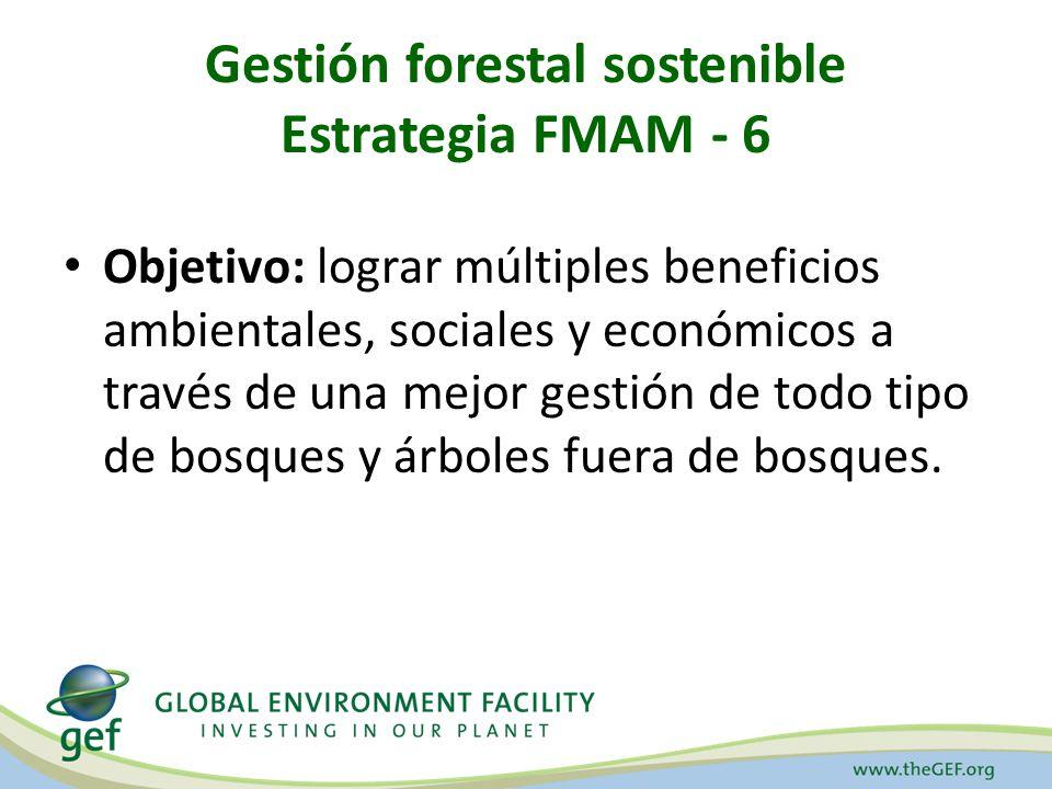 Objetivos Estratégicos de la gestión forestal sostenible para FMAM - 6 Mantener los recursos forestales – Planificación integrada del uso de la tierra – Identificación y monitoreo de BAVC – Identificación y seguimiento de la pérdida de bosques Mejorar la gestión de los bosques – Desarrollo e implementación de proyectos modelo para PSA – Desarrollo de capacidades para la gestión forestal sostenible en las comunidades locales – Apoyar los mecanismos de financiamiento sostenibles para la gestión forestal sostenible
