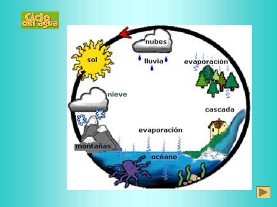 Calidad del Agua Es la presencia en el agua de cualquier forma de materia ( E* ), en concentración ( Intensidad ) que pueda producir efectos negativos en la salud del ser humano, flora y fauna, o deterioro de la calidad del agua en usos benéficos.