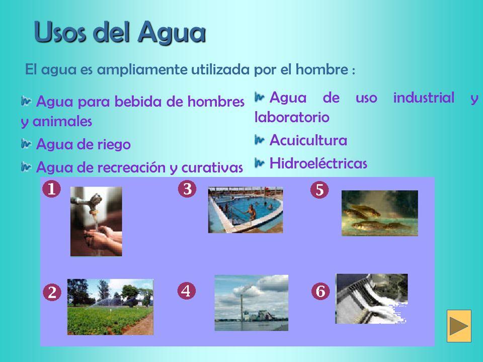 Usos del Agua Agua de uso industrial y laboratorio Acuicultura Hidroeléctricas Agua para bebida de hombres y animales Agua de riego Agua de recreación