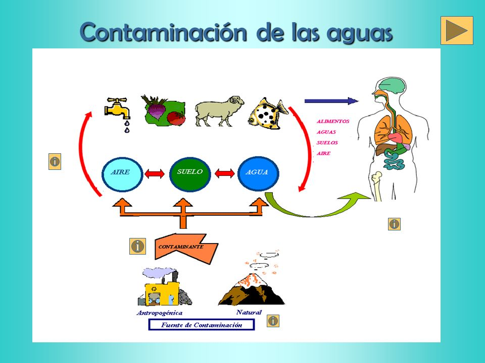 Fuentes de contaminación de las aguas Fenómenos naturales : Erupciones volcánicas, sismos, sequia, aluviones, entre otros.