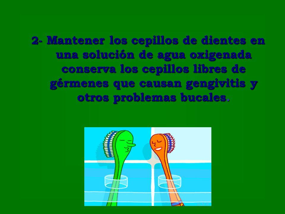 2- Mantener los cepillos de dientes en una solución de agua oxigenada conserva los cepillos libres de gérmenes que causan gengivitis y otros problemas