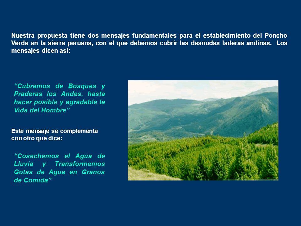 Nuestra propuesta tiene dos mensajes fundamentales para el establecimiento del Poncho Verde en la sierra peruana, con el que debemos cubrir las desnudas laderas andinas.