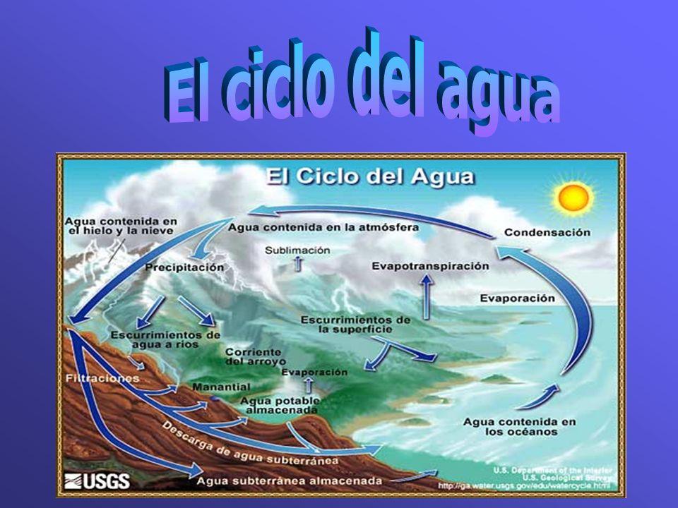 Uso del aguaLitro de agua Baño de inmersión150-170 Ducha (15 mins)60-80 Inodoro20 Depósito de inodoro que pierde 2600/3000 Canilla que gotea46/50 Lava