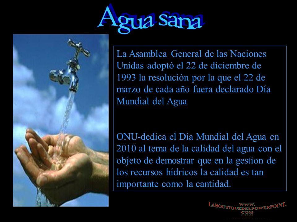 La Asamblea General de las Naciones Unidas adoptó el 22 de diciembre de 1993 la resolución por la que el 22 de marzo de cada año fuera declarado Día Mundial del Agua ONU-dedica el Día Mundial del Agua en 2010 al tema de la calidad del agua con el objeto de demostrar que en la gestion de los recursos hídricos la calidad es tan importante como la cantidad.