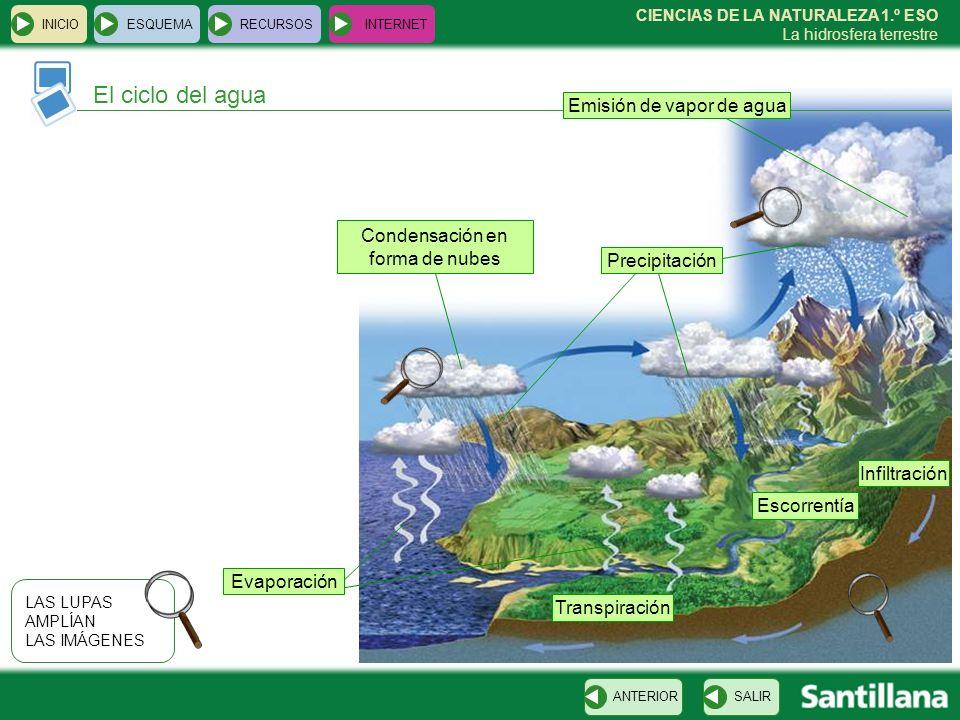 CIENCIAS DE LA NATURALEZA 1.º ESO La hidrosfera terrestre El ciclo del agua INICIOESQUEMARECURSOSINTERNET SALIRANTERIOR Emisión de vapor de agua LAS L