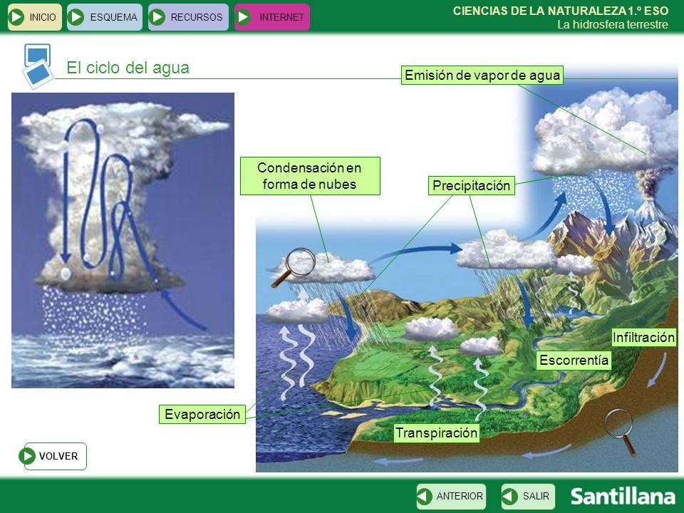 CIENCIAS DE LA NATURALEZA 1.º ESO La hidrosfera terrestre El ciclo del agua INICIOESQUEMARECURSOSINTERNET SALIRANTERIOR VOLVER Emisión de vapor de agu