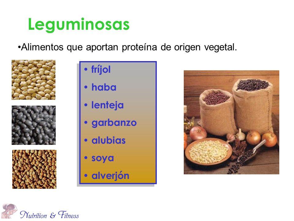 fríjol haba lenteja garbanzo alubias soya alverjón fríjol haba lenteja garbanzo alubias soya alverjón Leguminosas Alimentos que aportan proteína de or