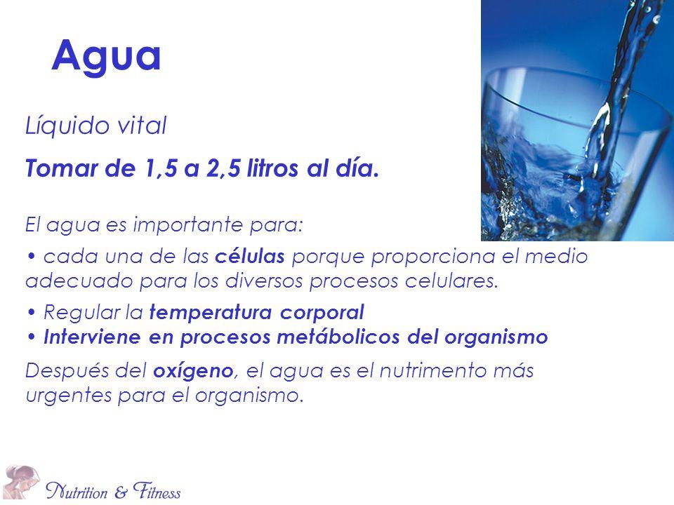 Líquido vital Tomar de 1,5 a 2,5 litros al día. El agua es importante para: cada una de las células porque proporciona el medio adecuado para los dive
