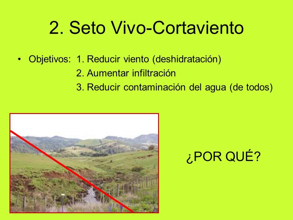 2. Seto Vivo-Cortaviento Objetivos: 1. Reducir viento (deshidratación) 2. Aumentar infiltración 3. Reducir contaminación del agua (de todos) ¿POR QUÉ?
