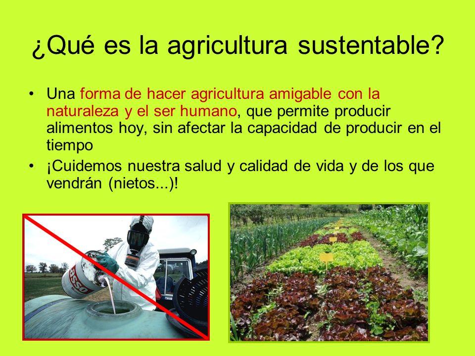 ¿Qué es la agricultura sustentable? Una forma de hacer agricultura amigable con la naturaleza y el ser humano, que permite producir alimentos hoy, sin