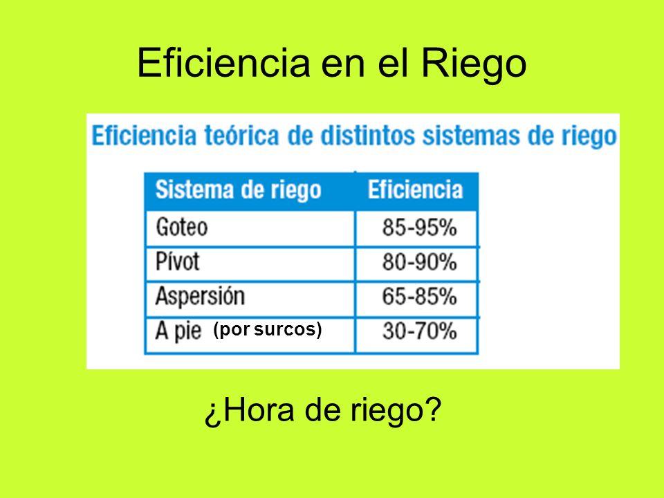 Eficiencia en el Riego (por surcos) ¿Hora de riego?