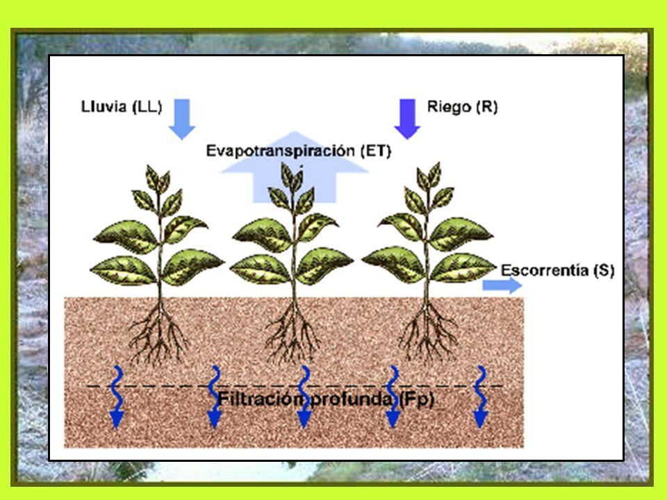 Técnicas Prácticas Agua-Suelo Principios: 1. Minimizar escorrentía = Maximizar infiltración 2. Minimizar erosión del suelo (promover conservación) 3.