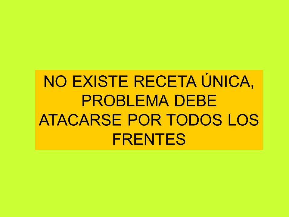NO EXISTE RECETA ÚNICA, PROBLEMA DEBE ATACARSE POR TODOS LOS FRENTES