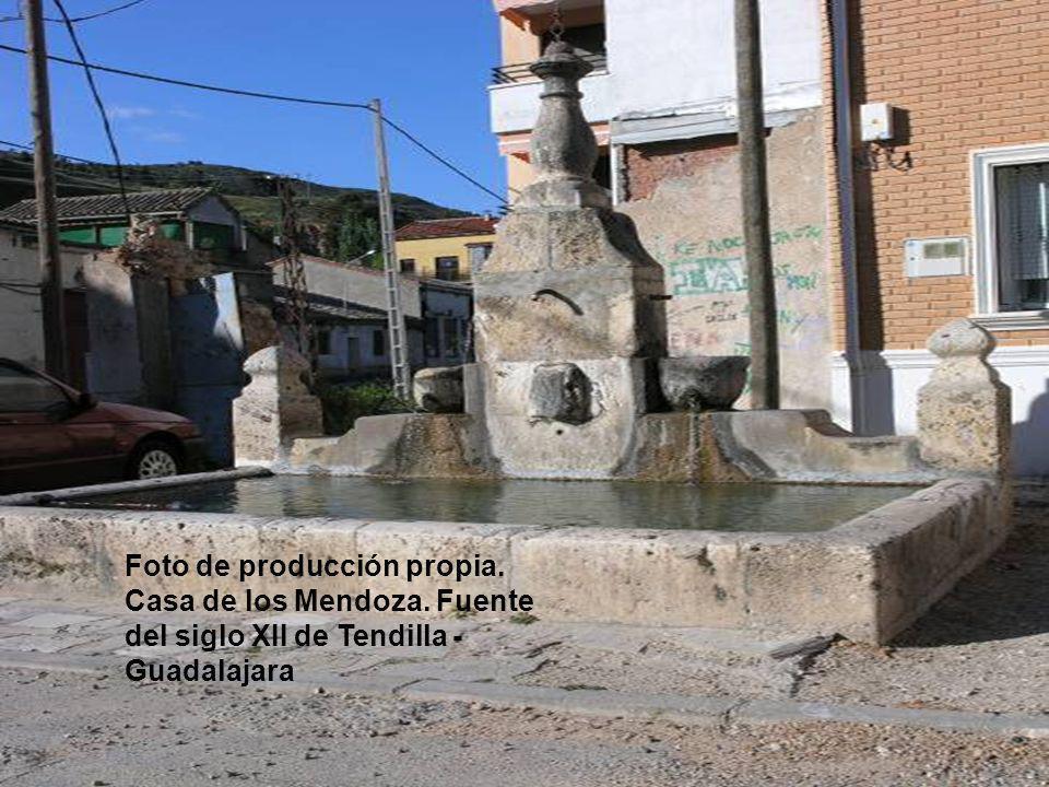 Foto de producción propia. Casa de los Mendoza. Fuente del siglo XII de Tendilla - Guadalajara