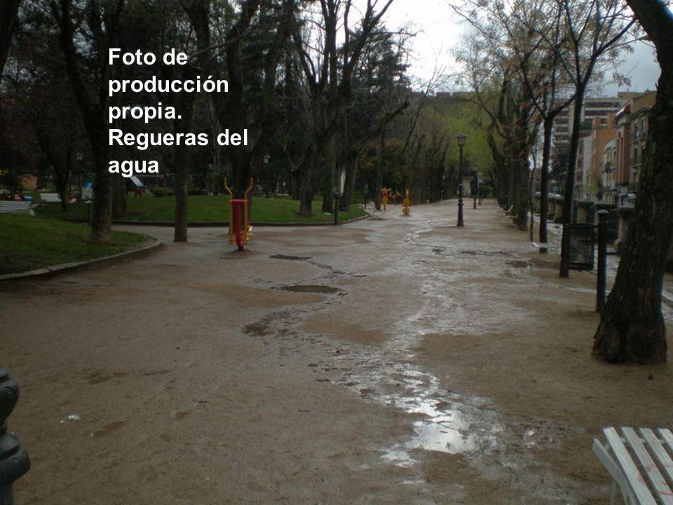 Foto de producción propia. Regueras del agua