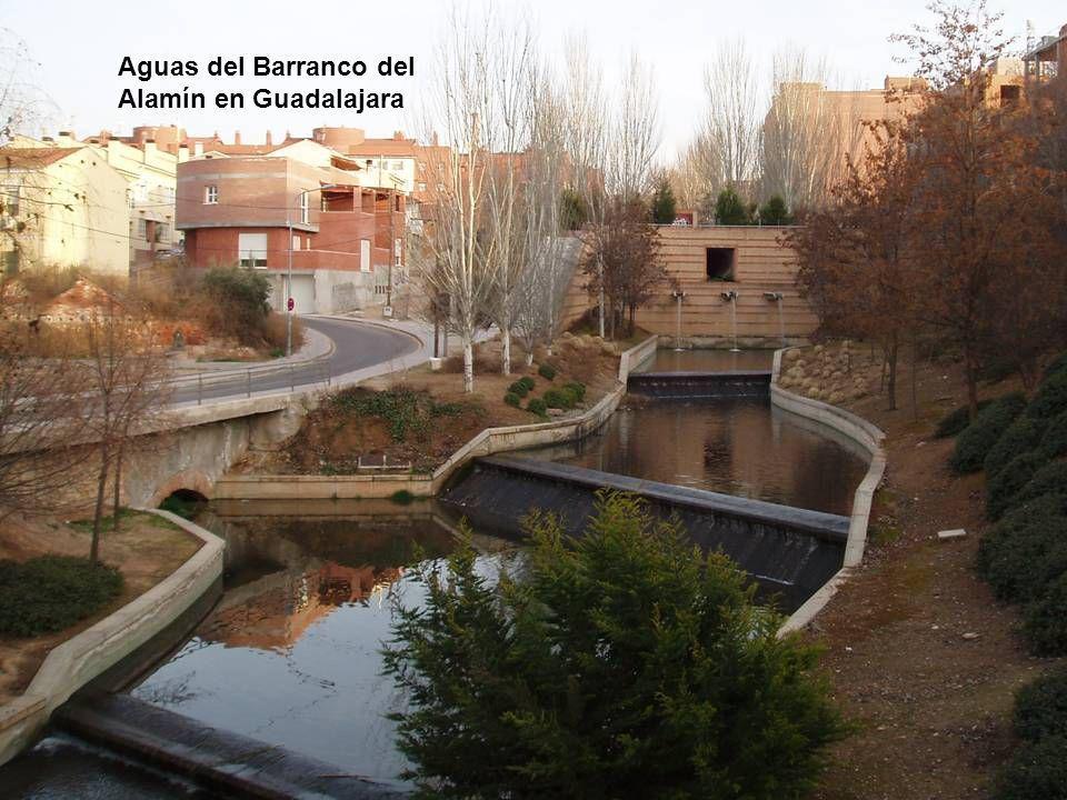 Aguas del Barranco del Alamín en Guadalajara