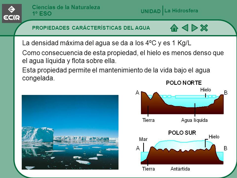 Ciencias de la Naturaleza 1º ESO PROPIEDADES CARÁCTERÍSTICAS DEL AGUA La Hidrosfera UNIDAD El agua es amortiguador térmico.