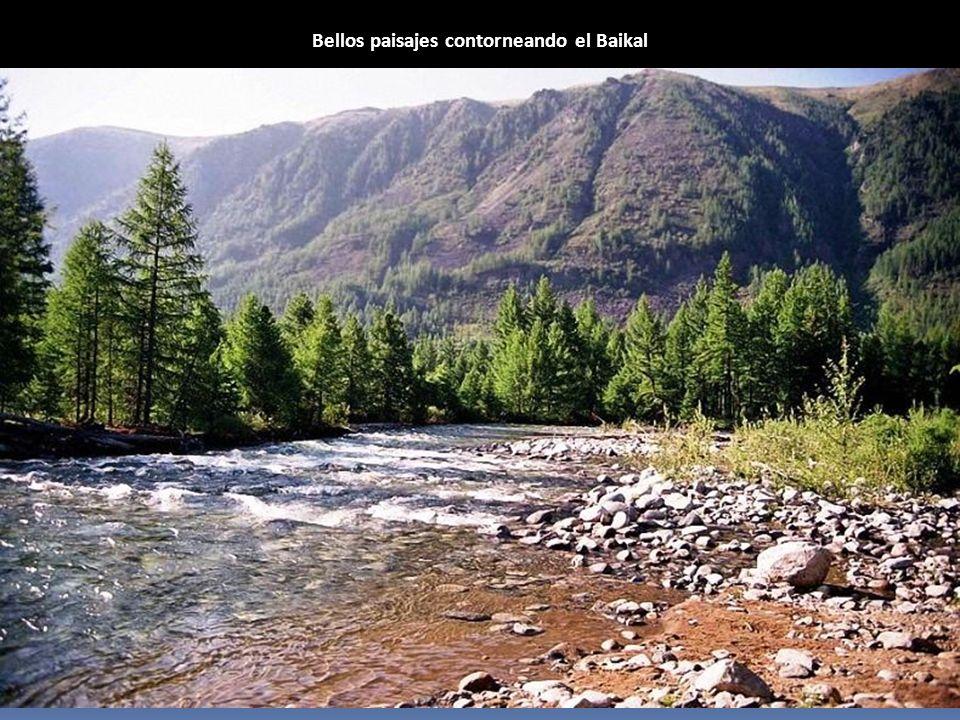 Bellos paisajes contorneando el Baikal