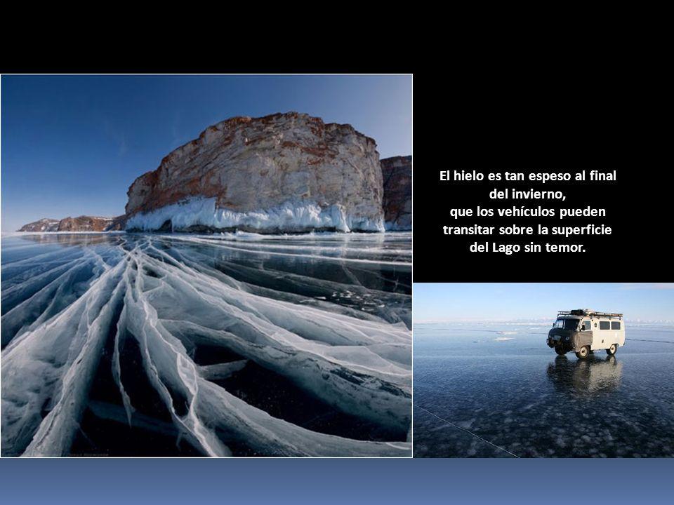 El hielo es tan espeso al final del invierno, que los vehículos pueden transitar sobre la superficie del Lago sin temor.