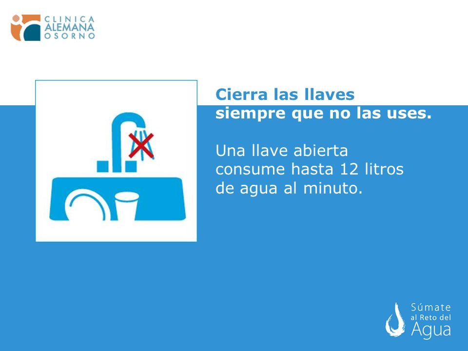 Cierra las llaves siempre que no las uses. Una llave abierta consume hasta 12 litros de agua al minuto.