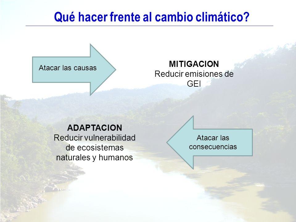 ADAPTACION Reducir vulnerabilidad de ecosistemas naturales y humanos MITIGACION Reducir emisiones de GEI Atacar las causas Atacar las consecuencias Qu