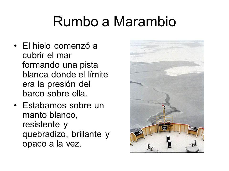 Rumbo a Marambio El hielo comenzó a cubrir el mar formando una pista blanca donde el límite era la presión del barco sobre ella. Estabamos sobre un ma