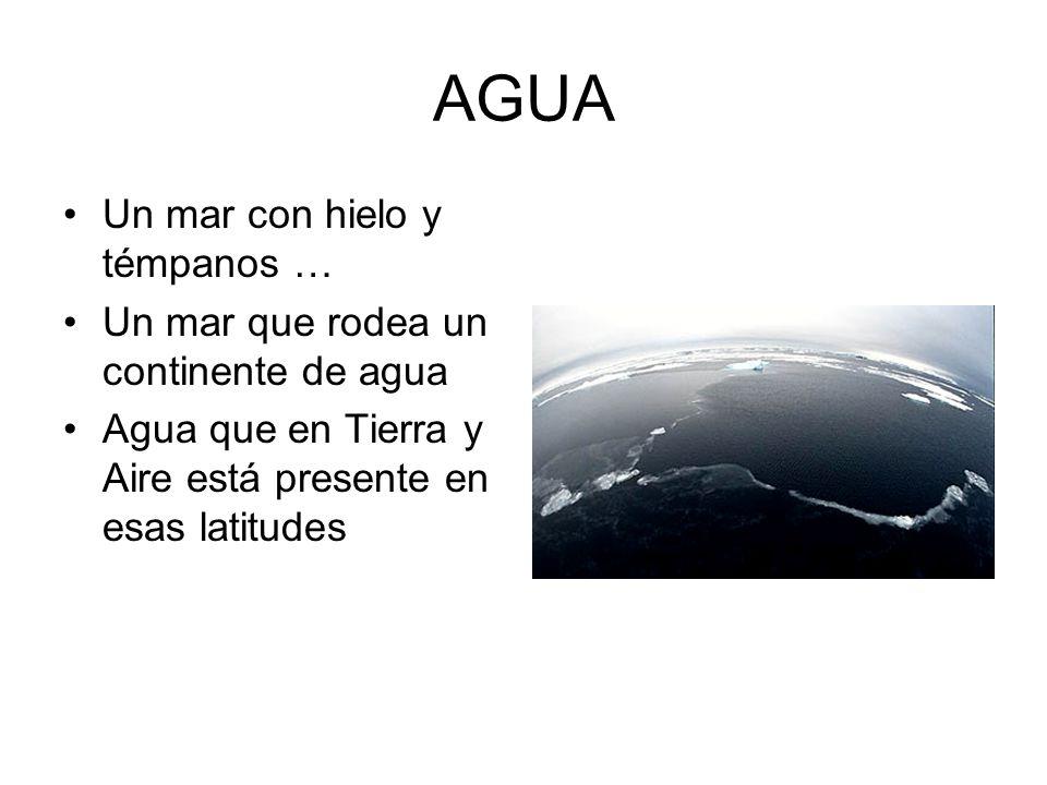 AGUA Un mar con hielo y témpanos … Un mar que rodea un continente de agua Agua que en Tierra y Aire está presente en esas latitudes