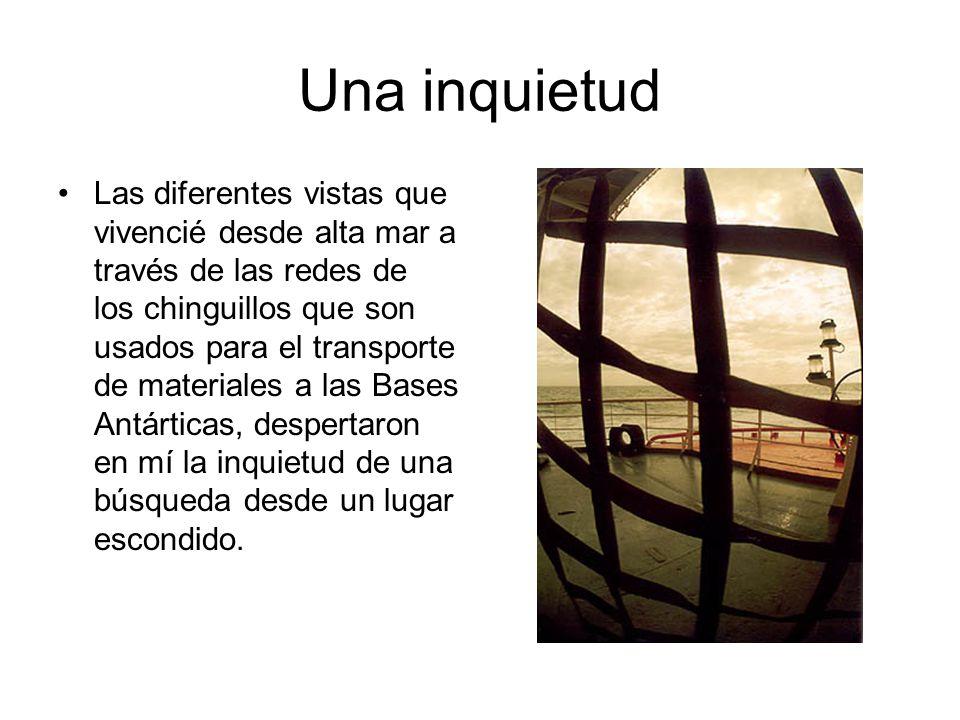 Una inquietud Las diferentes vistas que vivencié desde alta mar a través de las redes de los chinguillos que son usados para el transporte de material