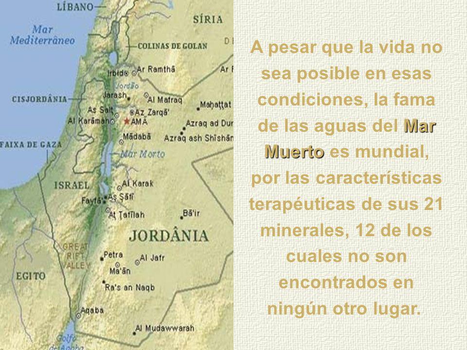 Mar Muerto El nombre Mar Muerto fue dado en virtud del hecho de la gran cantidad de sal en sus aguas que no permite el desenvolvimiento de ningún tipo