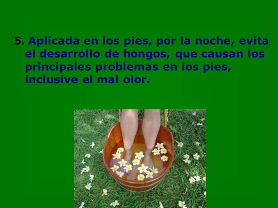 5. Aplicada en los pies, por la noche, evita el desarrollo de hongos, que causan los principales problemas en los pies, inclusive el mal olor.