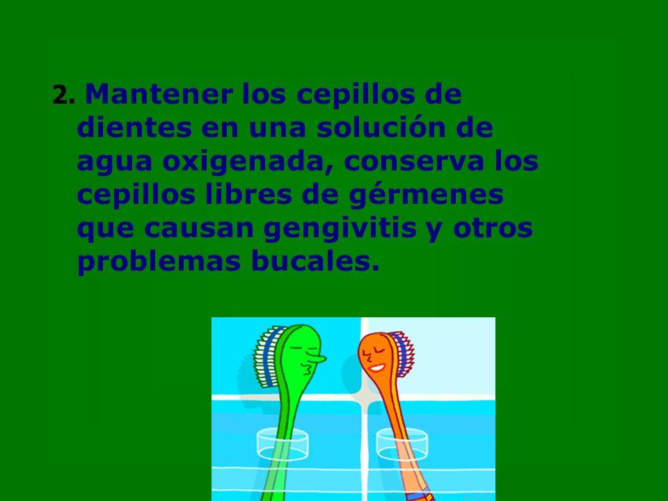 2. Mantener los cepillos de dientes en una solución de agua oxigenada, conserva los cepillos libres de gérmenes que causan gengivitis y otros problema