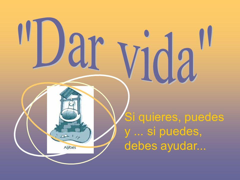 La Iglesia El dispensario En el centro de los poblados se encuentra la Misión de Nueva Esperanza.